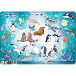 Dodo Puzzle Frame Antarctica 300176