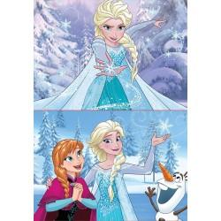 Educa Borras Puzzles Frozen 2x20 pcs 16847